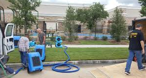 How to perform lawn water damage restoration process?